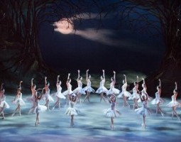 The Core and the Corps of Swan Lake