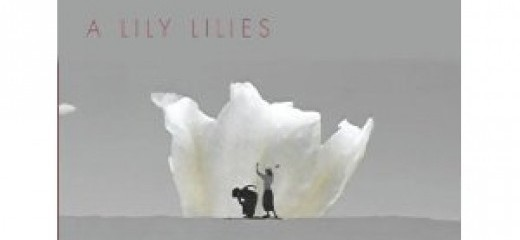 A Lily Lilies: Leah Stein, Josey Foo and the Desert of Page